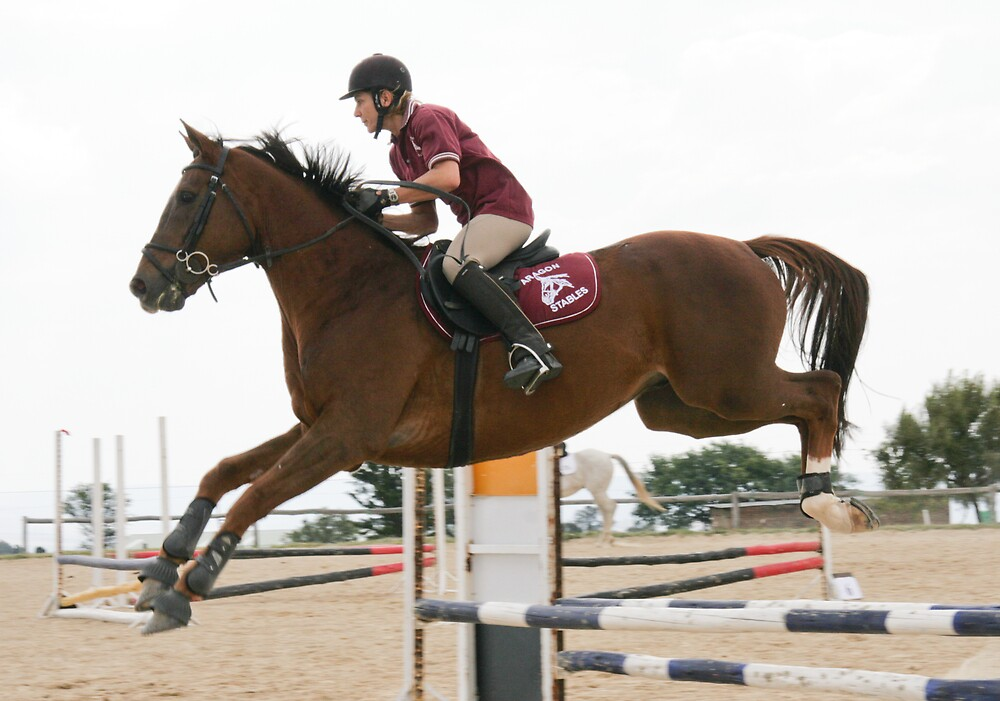 Equestrian Event. The High Jumper by Paul Lindenberg