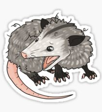 Opossum Drawing Stickers Redbubble