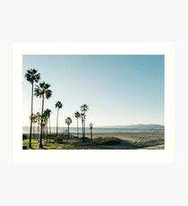 Southern California Palm Trees Art Print