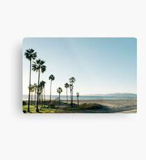 Southern California Palm Trees Metal Print