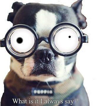 Dog Wisdome by OldDogJonDon