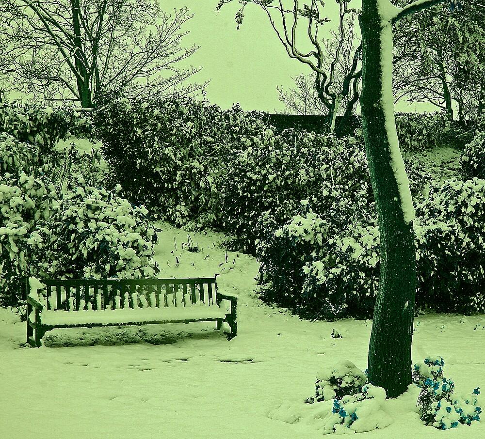 spring snow by JMDunworth