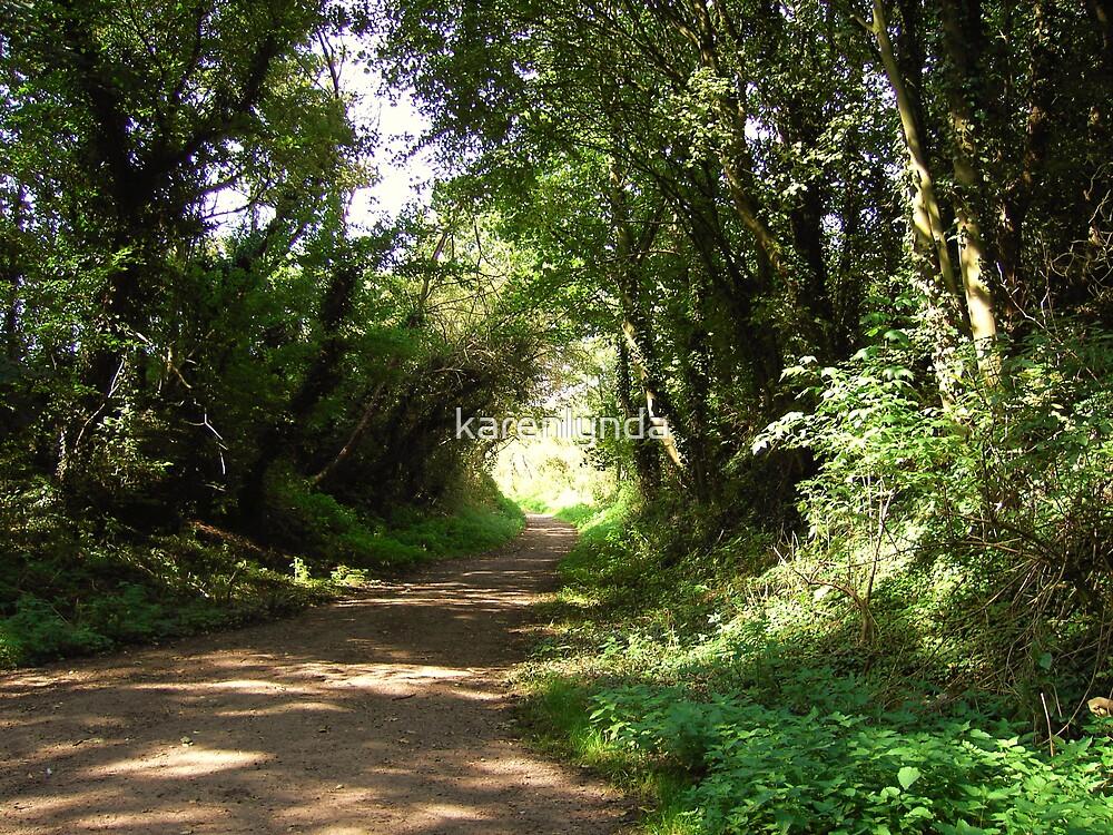 'Dark Lane' on a sunny day by karenlynda