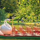 Swanboat Summer by Owed To Nature