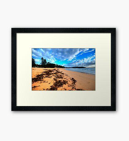 Palmie - Sydney Beaches - Palm Beach, - The HDR Series - Sydney,Australia Framed Print