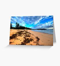 Palmie - Sydney Beaches - Palm Beach, - The HDR Series - Sydney,Australia Greeting Card