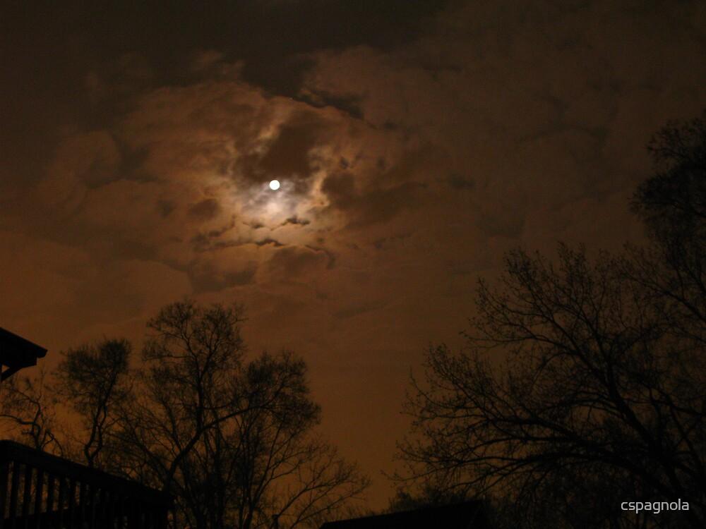 Spring night by cspagnola