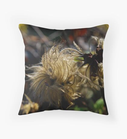 Life Stages Throw Pillow