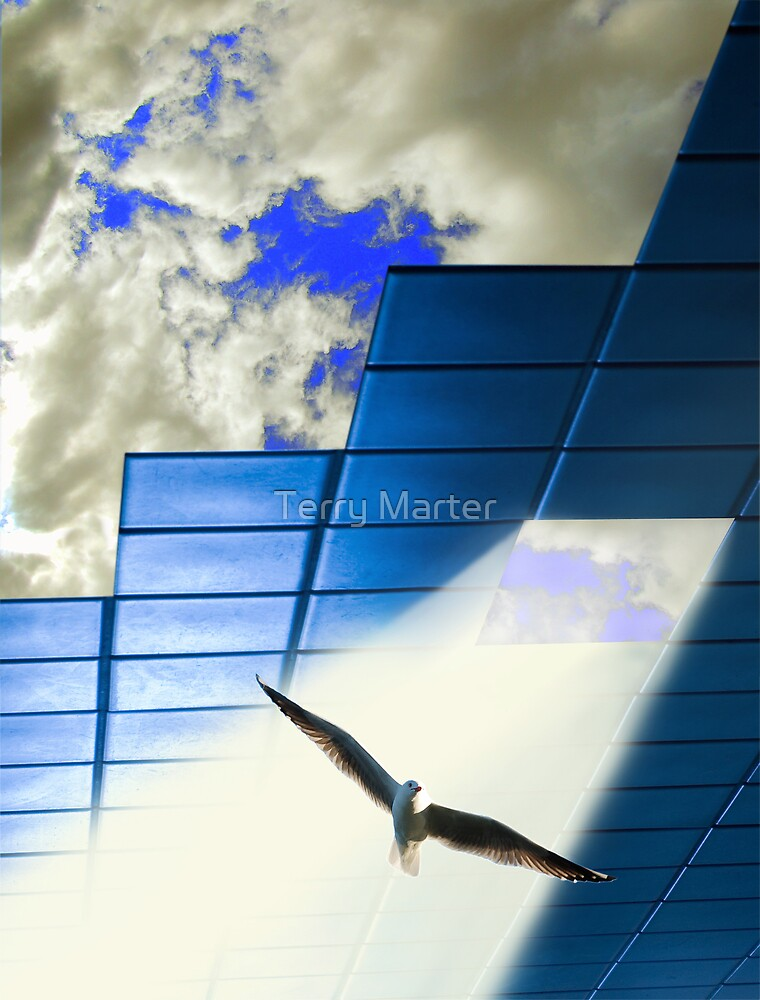 Skylight by Terry Marter