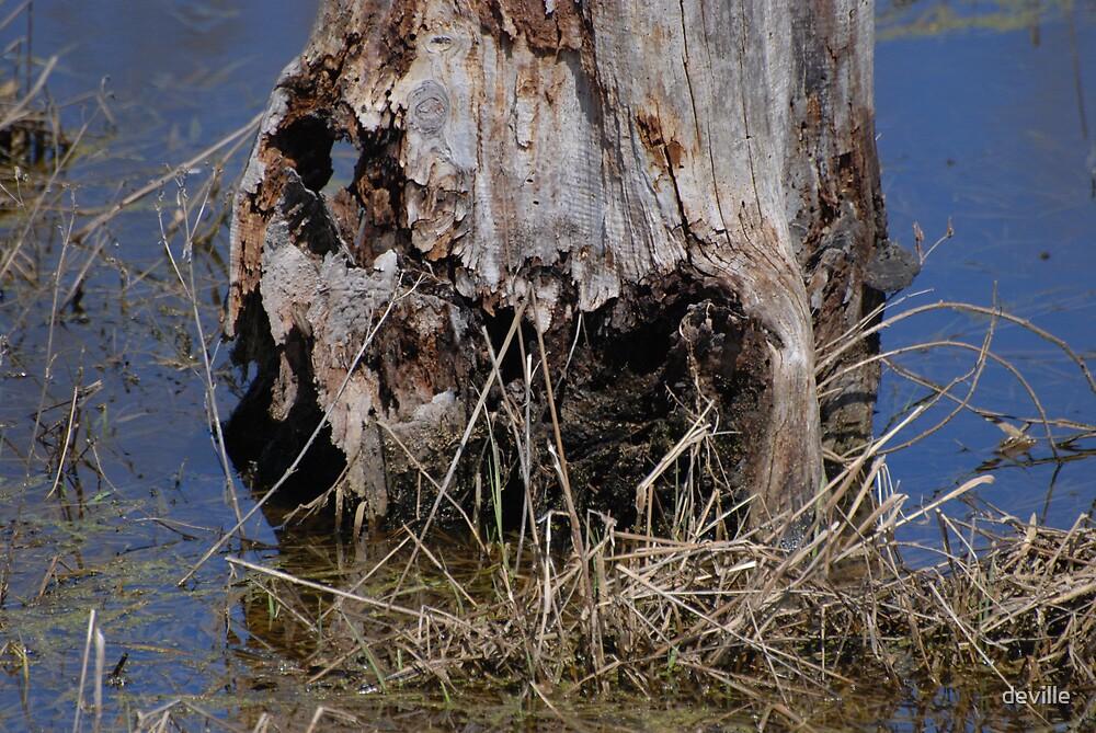 swamp monster by deville