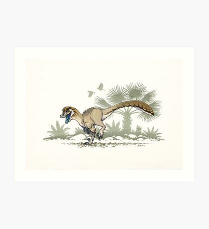 Troodon Art Print