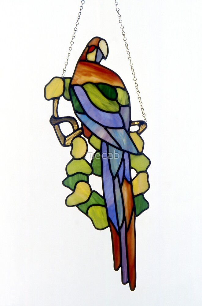 Stained Glass Parrot by mecab