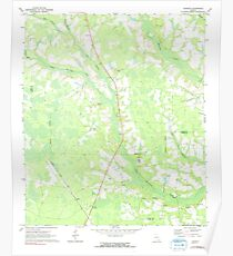 USGS TOPO Map Georgia GA Crawley 245440 1971 24000 Poster