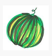 Large round watermelon Photographic Print