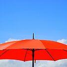 The Orange Umbrella by Paul Finnegan