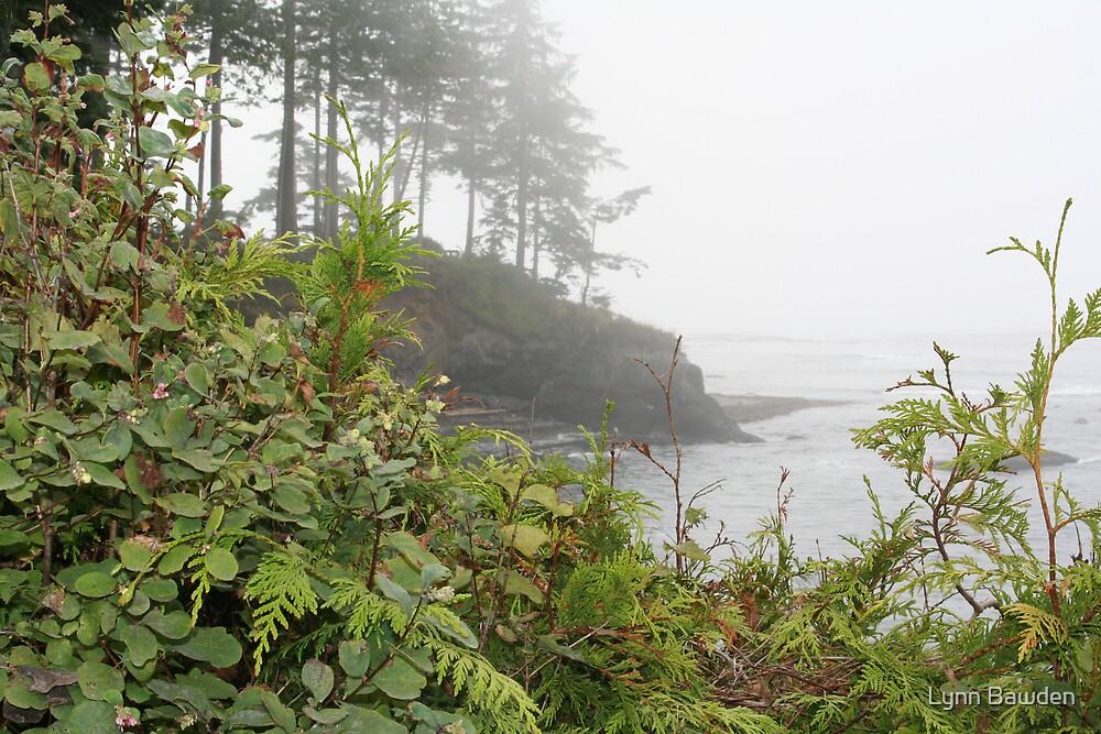 """""""A Foggy Day Along The Coast"""" by Lynn Bawden"""