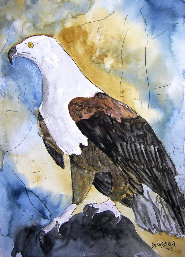 Eagle bird painting by derekmccrea