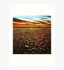Working the Long Paddock Art Print