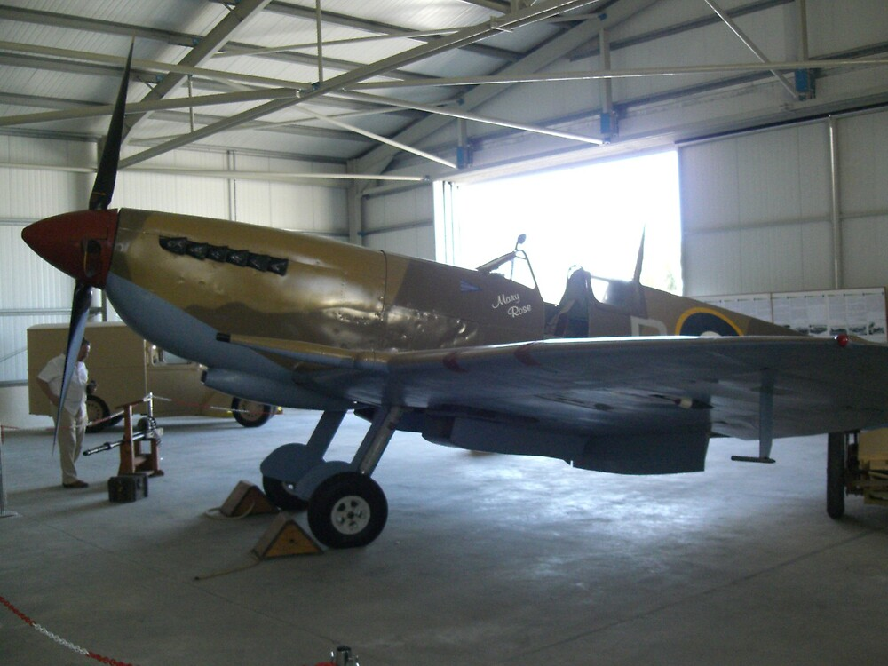 Mary Rose Spitfire by Joy Williams