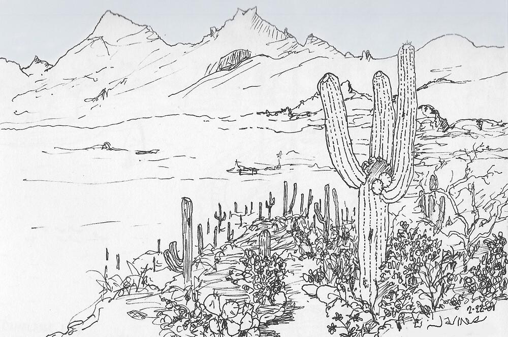 Hiking in the Rincon Mountains of Southern Arizona by James Lewis Hamilton