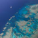 The Reef by Katja Fønss