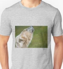 Smell Food Anyone  T-Shirt