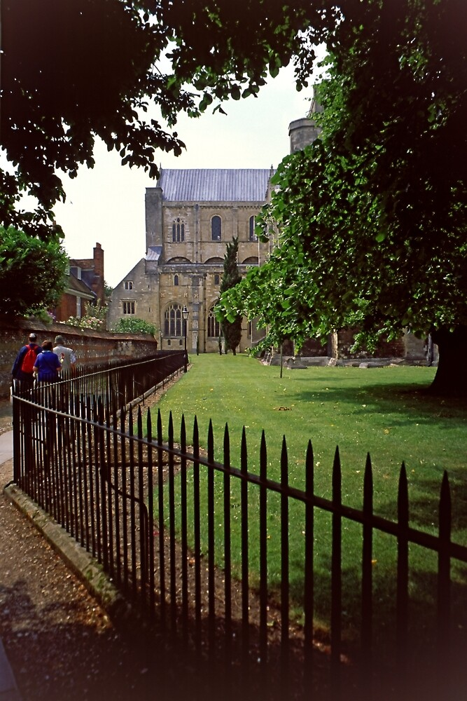 Winchester Cathedral by Priscilla Turner