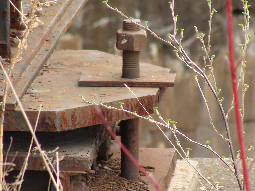 rail bolt by Jessica  Taylor-Cassan