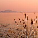 Sunset at Hikone on Lake Biwa, Japan. by johnrf