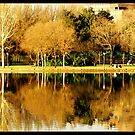 Lakeside reflections by MikeO