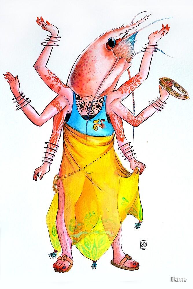 Dancer shrimp