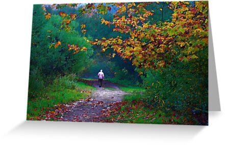 Autumn Path by Julie Marks