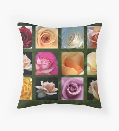 twelve of the best Throw Pillow