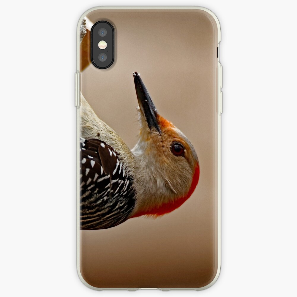 Red-Bellied Woodpecker on a Feeder iPhone Case & Cover