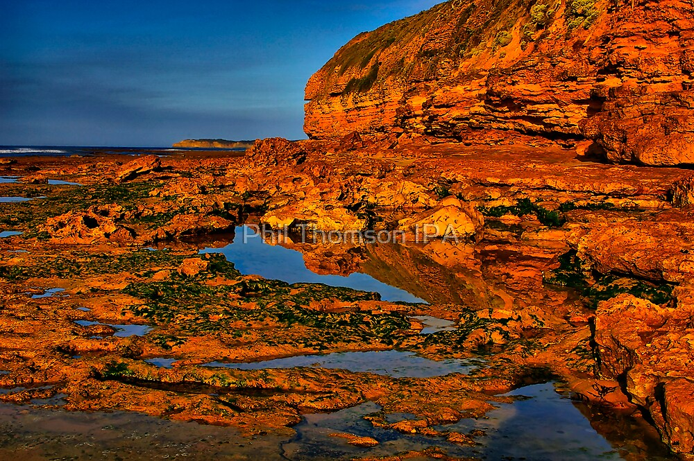 """""""Shoreline Reflections"""" by Phil Thomson IPA"""
