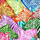 Rainbow of Zebras by pjwuebker