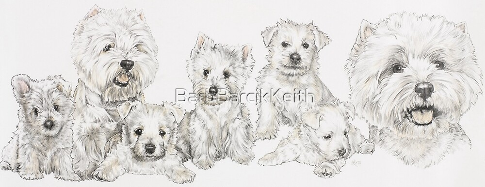West Highland White Terrier Growing Up  by BarbBarcikKeith