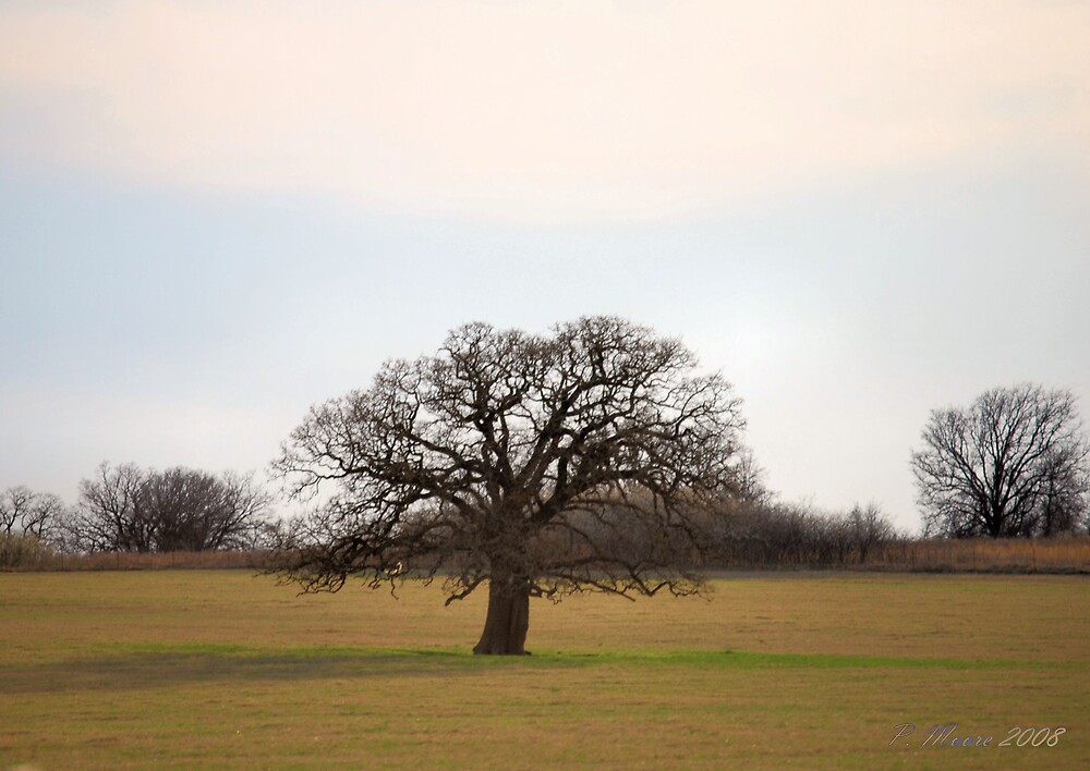 The Tree by Pat Moore