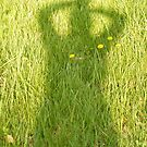 shadow by rebecca smith