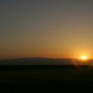 Arizona Morning by NewDawnPhoto