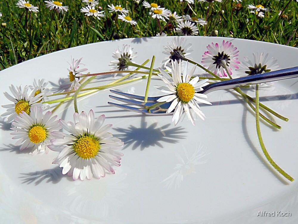 daisy-diet by Alfred Koch