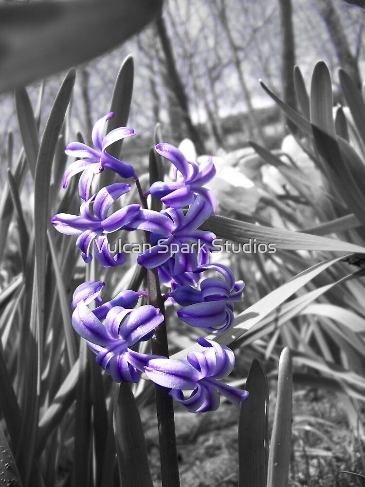 Purple by Vulcan Spark Studios