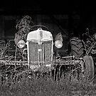 farmer's best friend by J.K. York