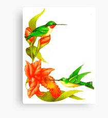 Humming Bird Tee Canvas Print