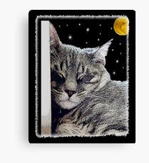 Catnap - Grey Tabby Cat  Canvas Print