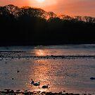 Cramond Estuary Sunset by Chris Clark