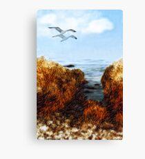Coastal Flight  Canvas Print
