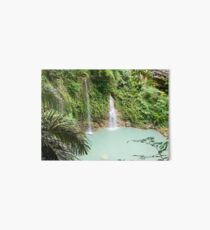 Mantayupan Waterfalls, Cebu, Philippines Art Board