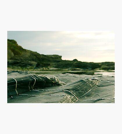 Veins Of White Photographic Print