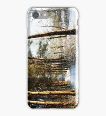 Forest Snow Scene iPhone Case/Skin